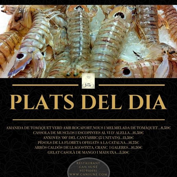 PLATS-DEL-DIA-e1523888745860